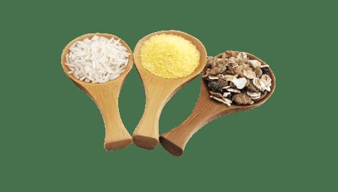 Autres féculents sans gluten   Achetez sur Calicote