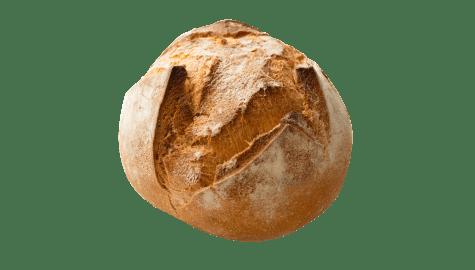 Pains 100% sans Gluten | Achetez sur Calicote